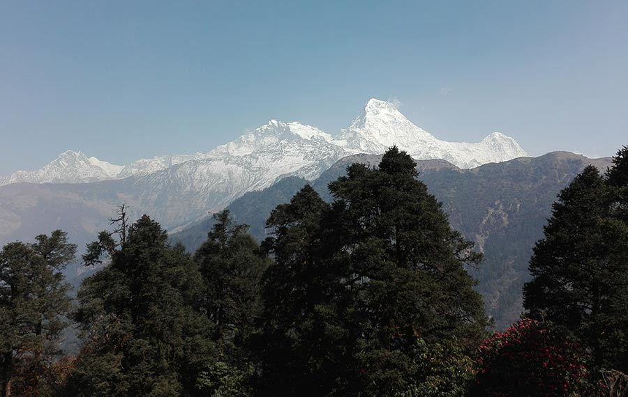 Annapurna Base Camp Trekking - 14 days